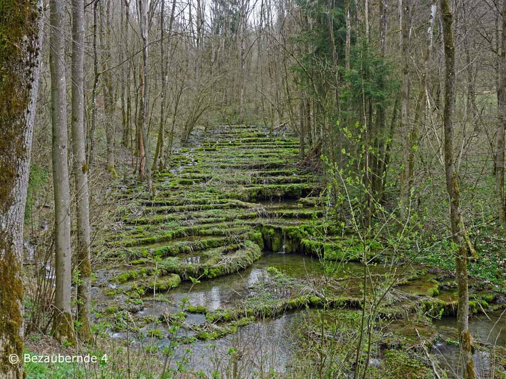 Erlebt das Naturdenkmal Sinterterrassen für Kinder.
