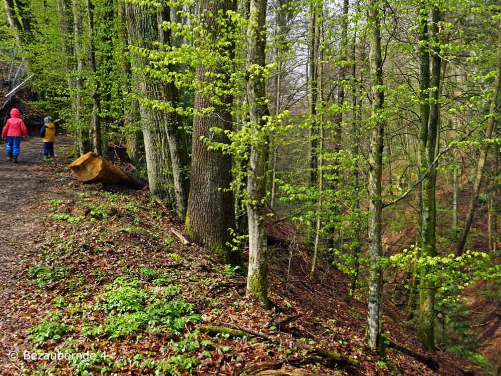 Wandern bei der Löwengrube in Altdorf mit Kinder
